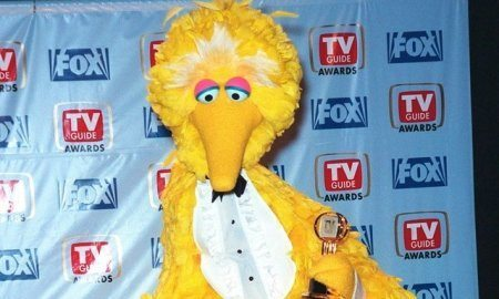 big bird sesame street