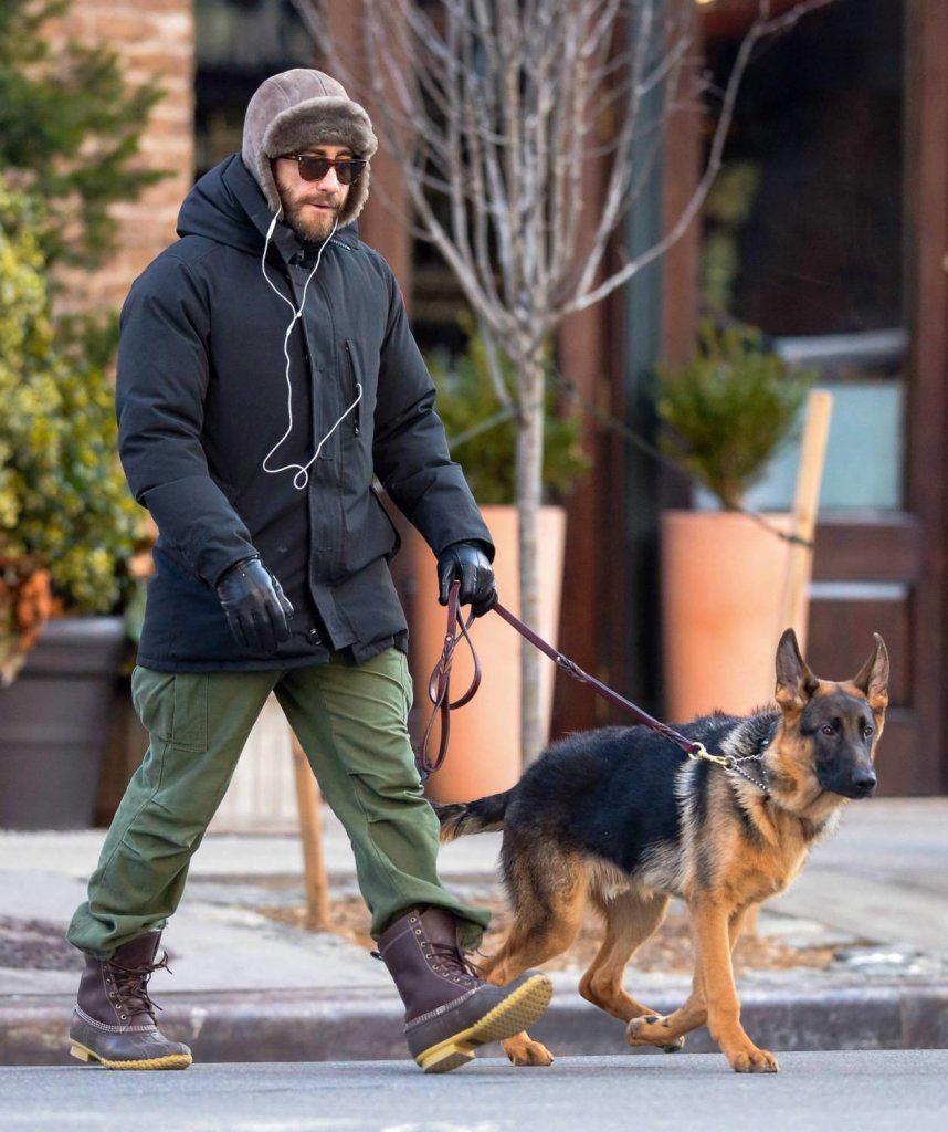 Jake Gyllenhaal and dog