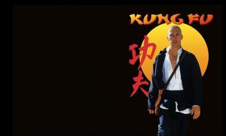 Ah, Grasshopper, Let Us Enlighten You with Facts About 'Kung Fu'