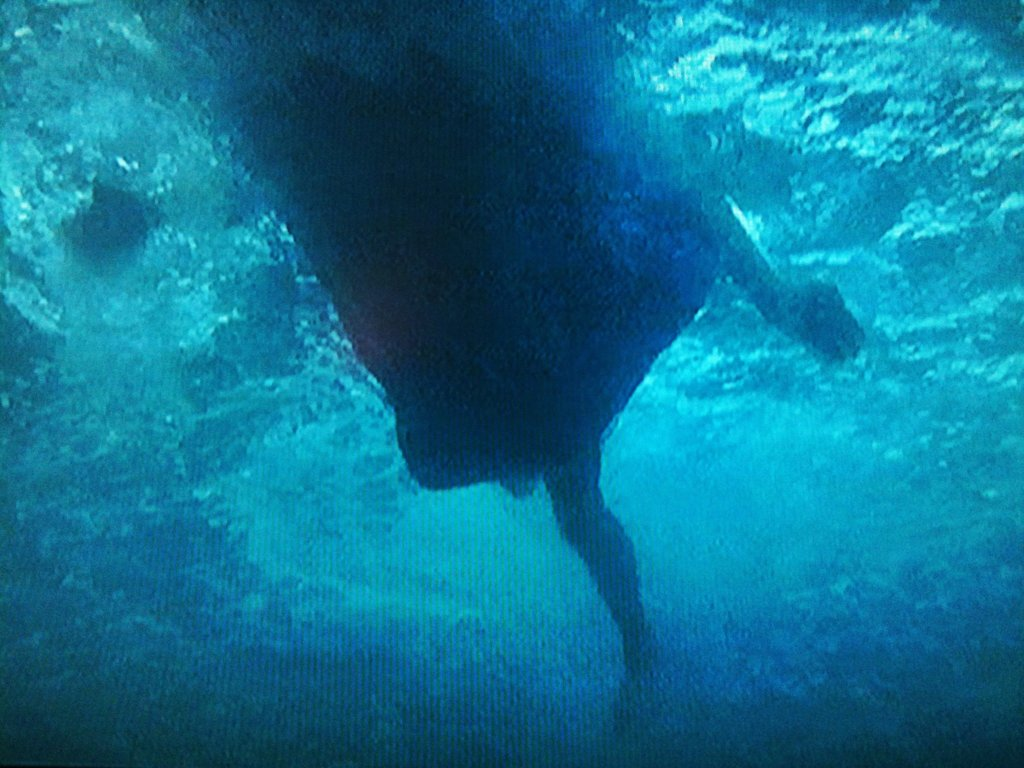 underwater Jaws shot