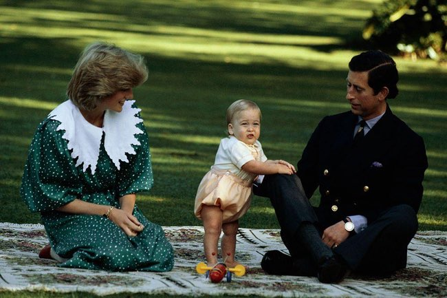 princess diana william