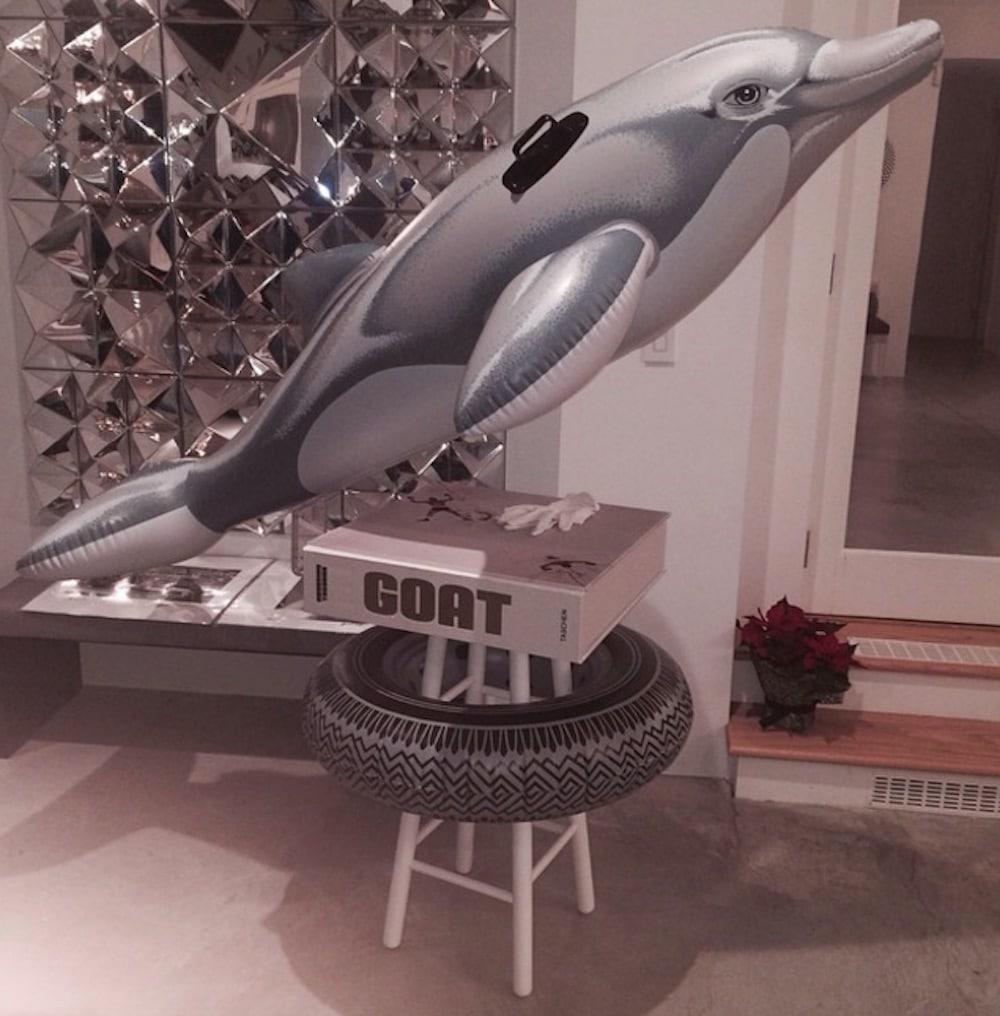 rihanna dolphin